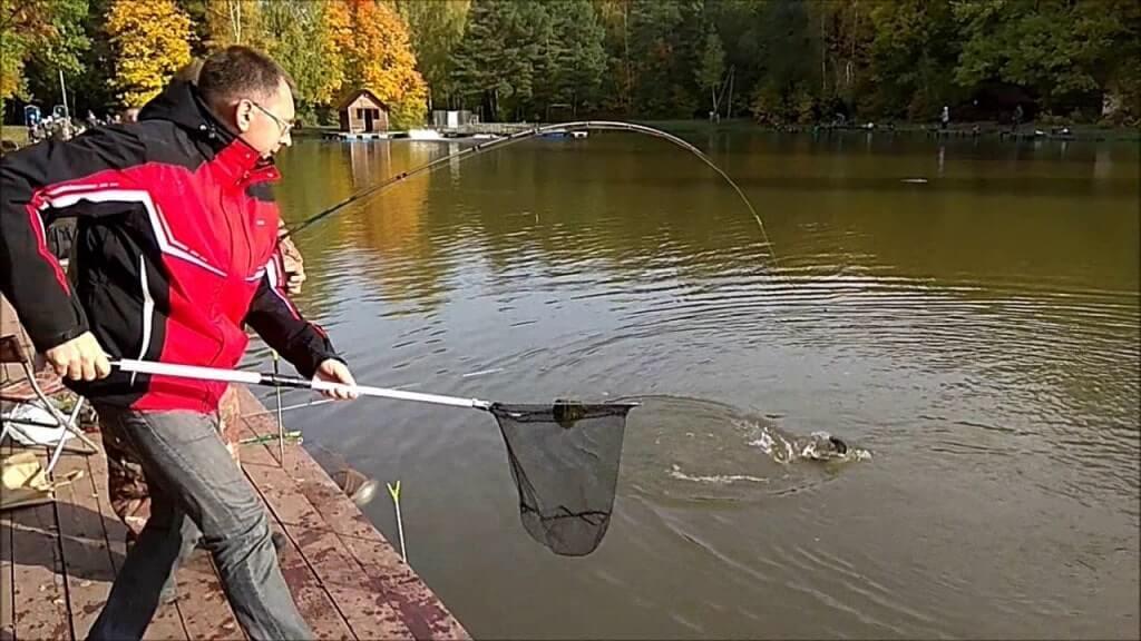 Рыбак и сачок
