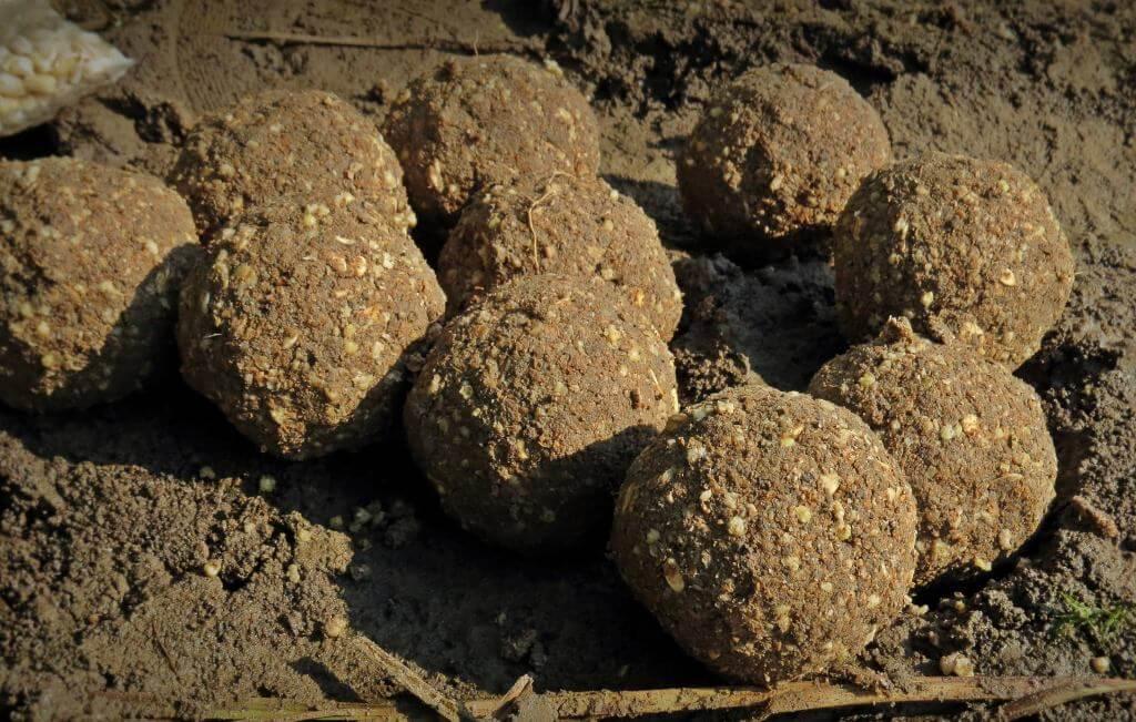 Шарики на карповых