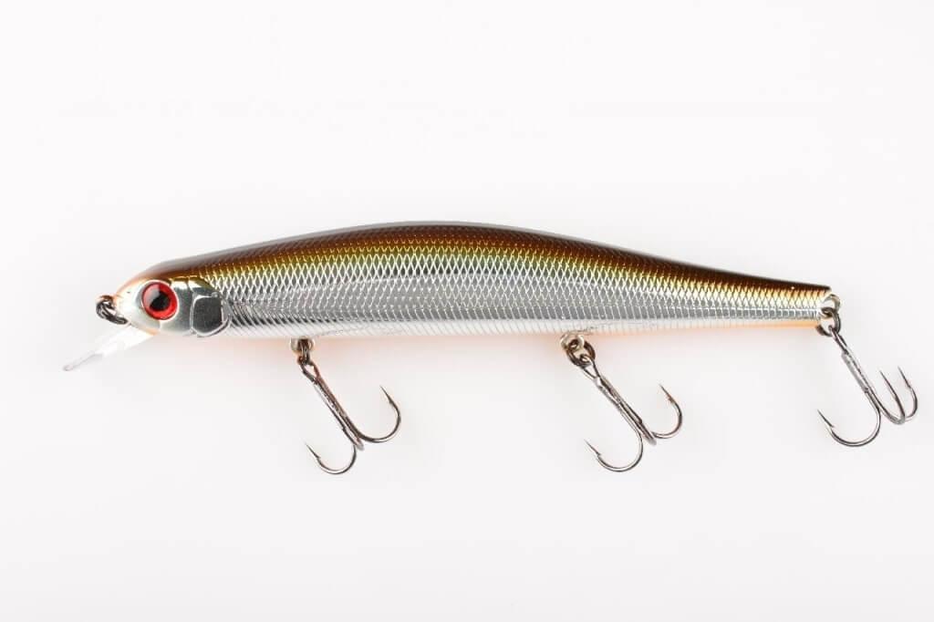 Рыбка орбит 110