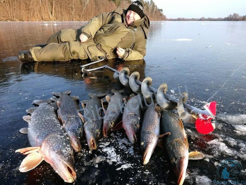 улов по первому льду